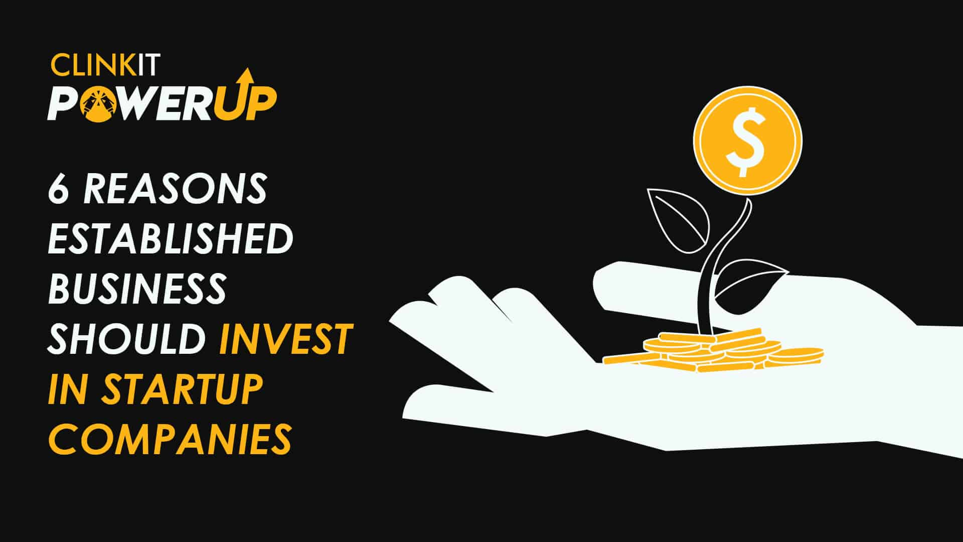 Invest in Startup Companies